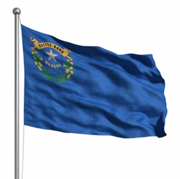 Nevada Emerging Small Business Certification